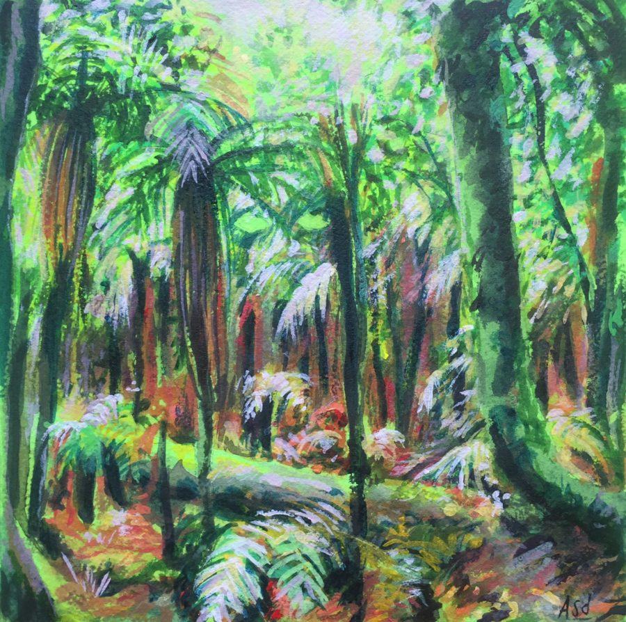 Atua, forêt pluviale